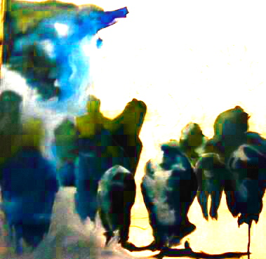 IMG_20131008_224259-1_2